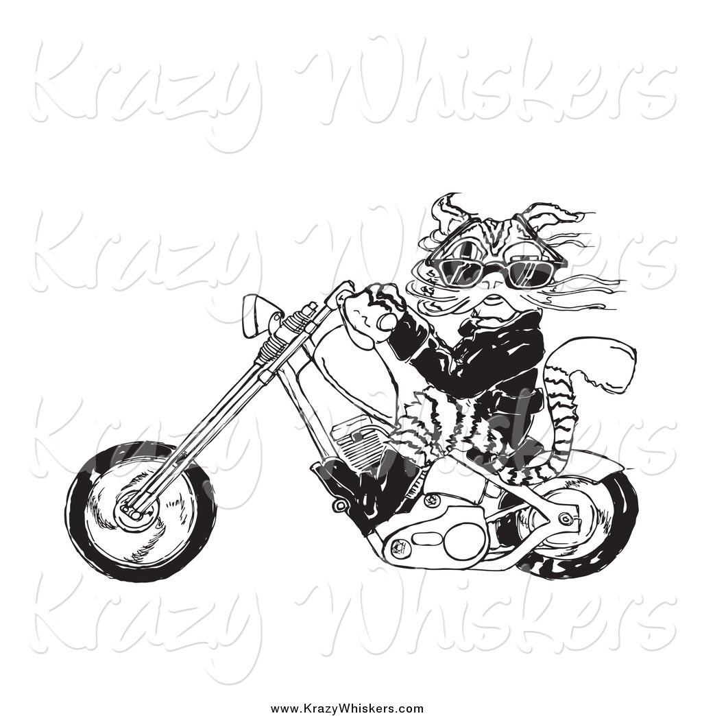 dog riding motorcycle clipart - photo #34