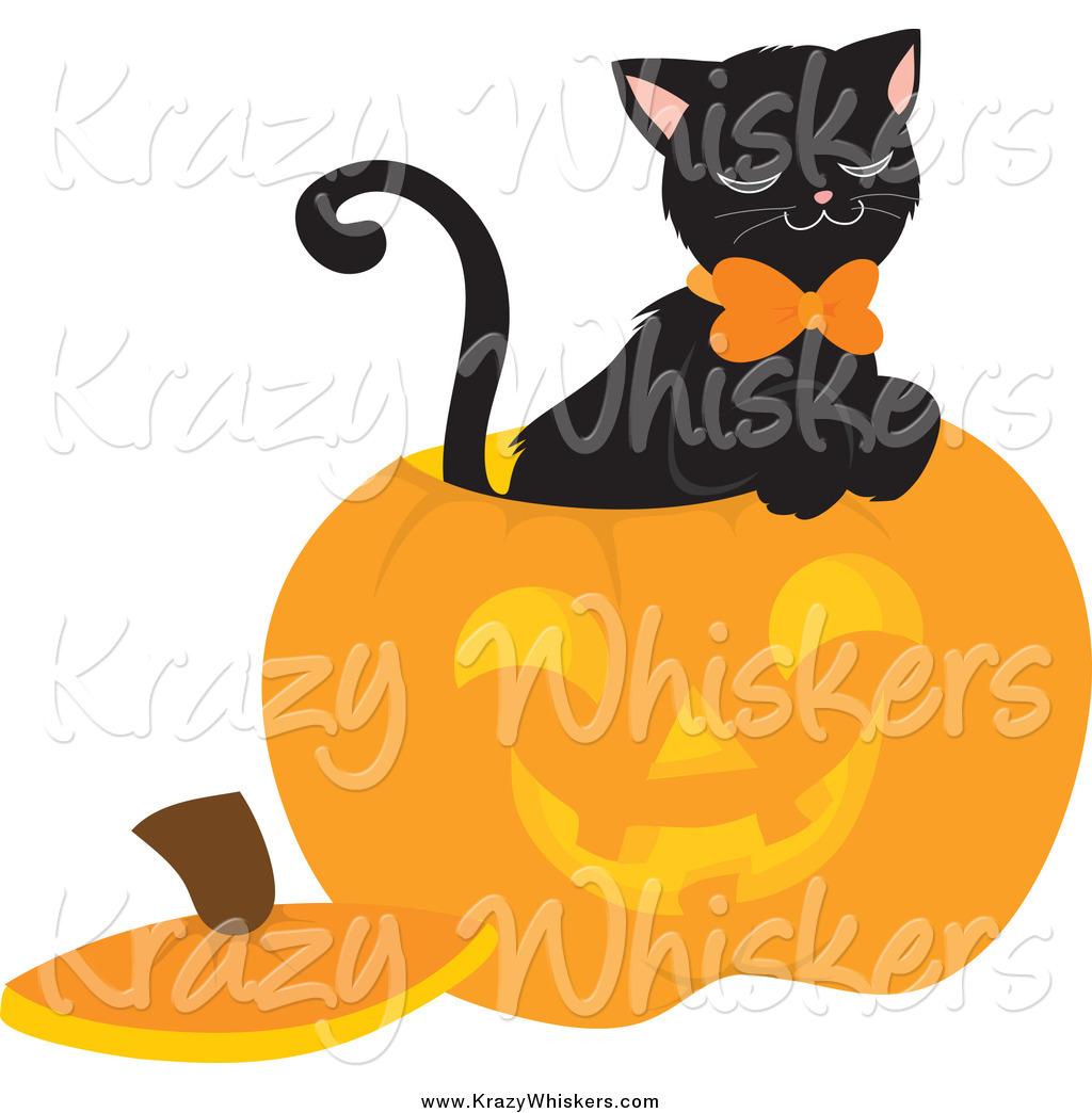 Black Cat Inside A Carved Halloween Pumpkin
