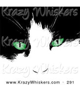 Critter Clipart of a Black and White Kitten's Face with Bright Green Eyes by KJ Pargeter