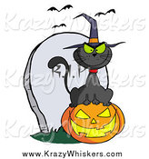 Critter Clipart of a Black Cat Wearing a Witch Hat and Sitting on a Pumpkin by a Tombstone and Bats by Hit Toon
