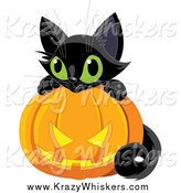 Critter Clipart of a Cute Black Kitten Resting on a Jackolantern by Pushkin