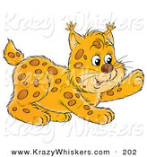 Critter Clipart of a Frisky Bobcat Cub Playing and Looking Right by Alex Bannykh