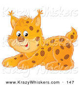 Critter Clipart of a Playful Spotted Bobcat Crouching - Royalty FreePlayful Spotted Bobcat Crouching by Alex Bannykh