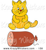 Critter Clipart of a Pudgy Yellow Cat Sitting in Front of a Roll of Sausage by Alex Bannykh