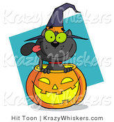 Vector Critter Clipart of a Black Cat Sitting Inside of a Halloween Pumpkin and Wearing with Hat, over a Turquoise Diamond by Hit Toon