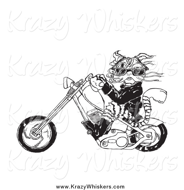 Critter Clipart of a Biker Cat Riding a Motorcycle