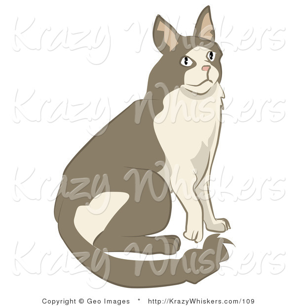 Critter Clipart of a Brown and Tan Cat Sitting and Looking up