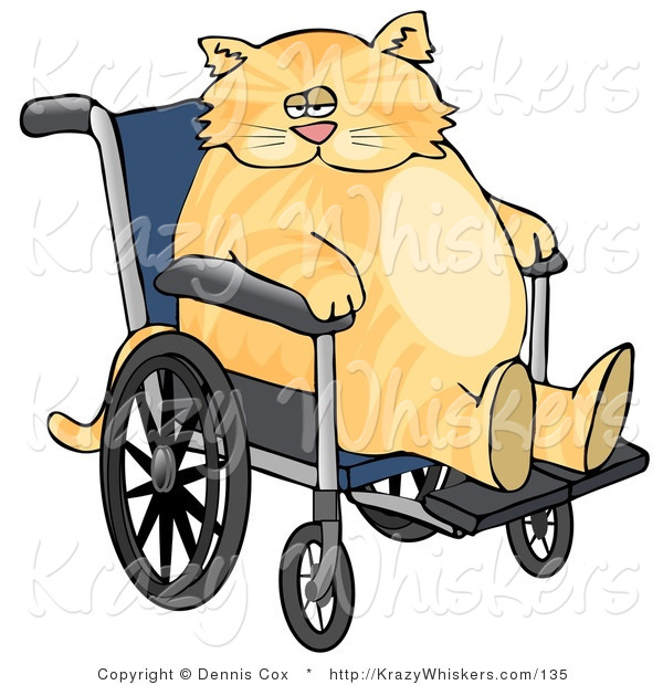 Critter Clipart of a Chubby Orange Tabby Cat Sitting in a Wheelchair in a Hospital