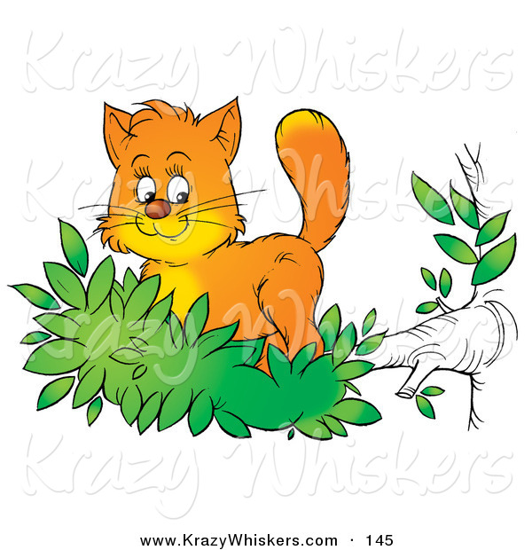 Critter Clipart of a Cute Orange Kitten Exploring the Outdoors, Standing in Leaves at the End of a Tree Branch