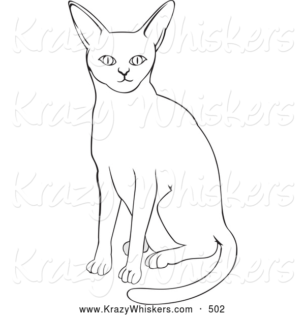 Critter Clipart of a Plain Abyssinian Cat
