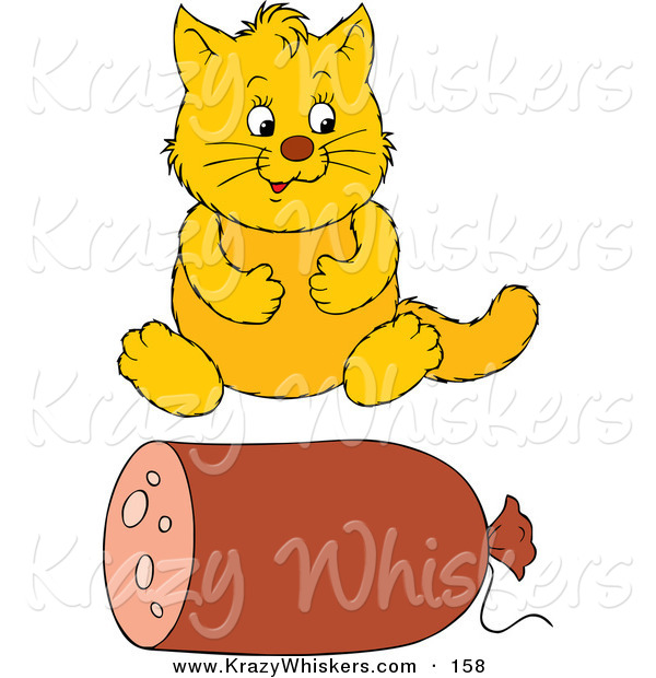 Critter Clipart of a Pudgy Yellow Cat Sitting in Front of a Roll of Sausage