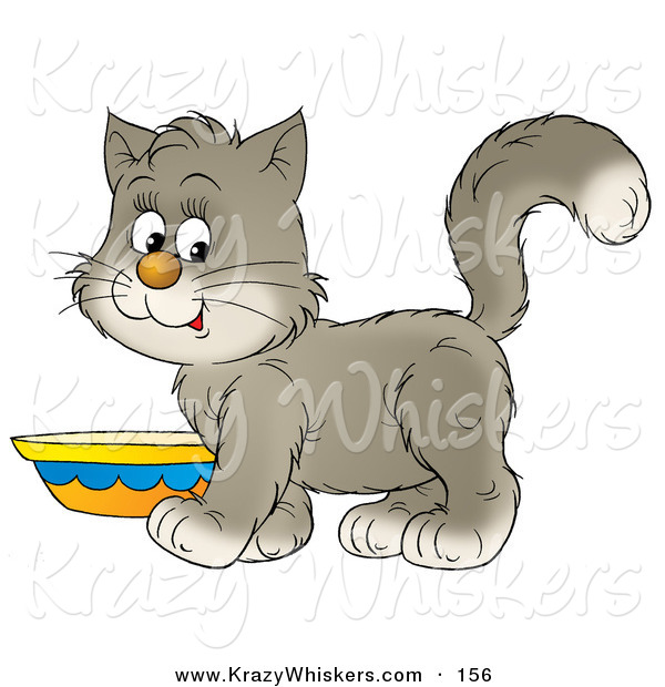 Critter Clipart of a Sweet Gray and White Kitten Standing by a Saucer of Milk
