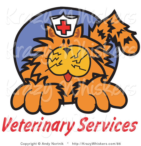 "Critter Clipart of an Orange Cat with Crazy Whiskers Wearing a White Nursing Hat with a Red Cross on It Above Text Reading ""Veterinary Services"""