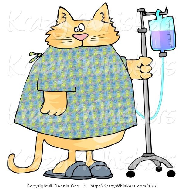 Critter Clipart of an Orange Tabby Cat with an IV Drip on a Stand in a Hospital