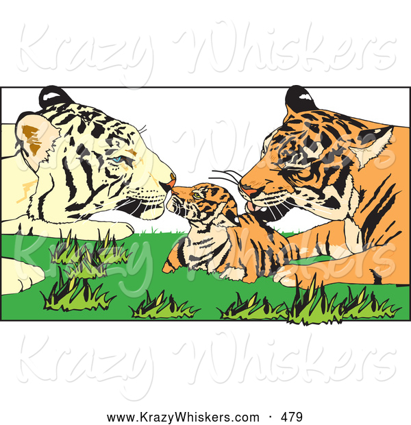 Critter Clipart of Tiger Parents Grooming Their Cute Cub